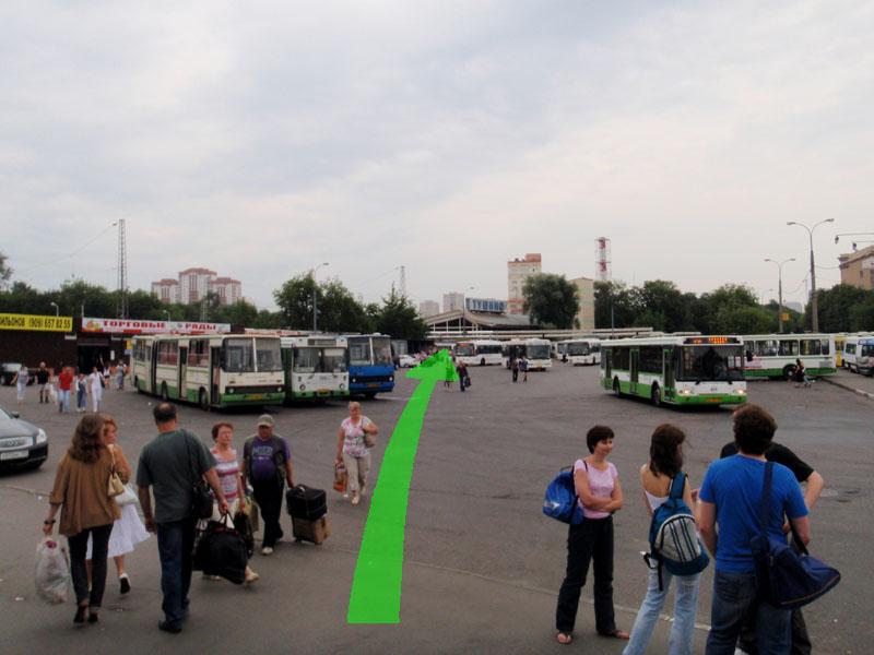 Автобус тушинская волоколамск